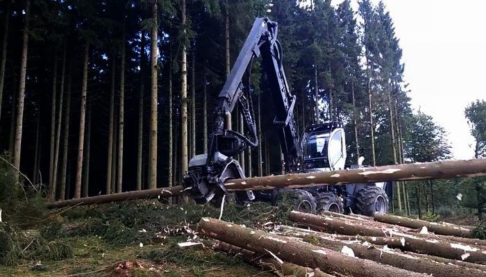 Скачать видео заготовка леса в россии